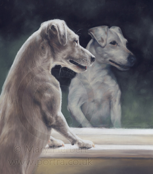 terrier at window portrait by Mary Herbert