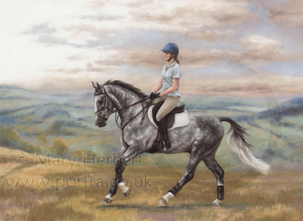 horse and rider portrait by Mary Herbert
