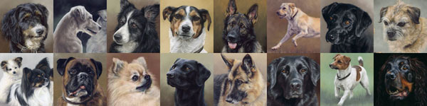 Pastel Dog POrtraits by Mary Herbert
