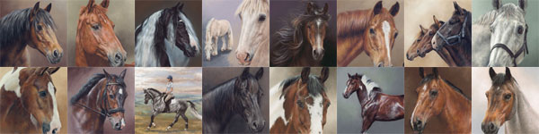 Pastel Horse Portraits by Mary Herbert